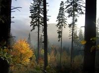 Autumn in Jeseniky 1