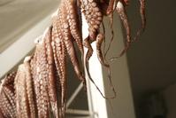 octopussy in restaurant