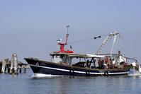 Fishing in Lagoon of Vanice