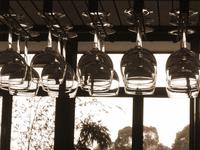 row of hanging wine glasses 1
