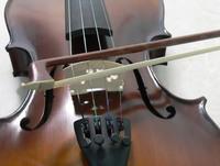 violin, 1
