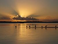 Queensland sunsets
