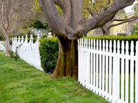 Fence Series 8