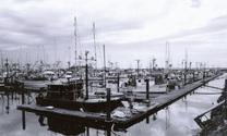 boats at the coner