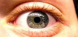 Eyes 1