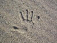 hand on sand