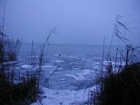 Winter at the lake Balaton 200