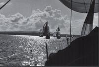 Sailing Race 2