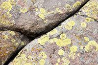 Rock Fissure