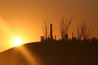 Rocky Point Sunset 2