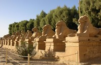 Avenue of sphinxs