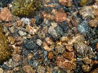 Shallow Ocean Water 2
