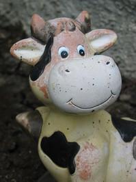 Cowsie