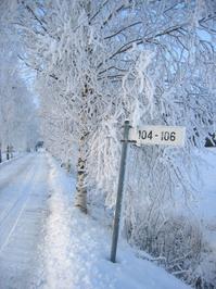 Frosty lane