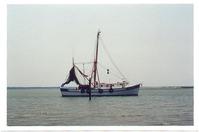 Shrimp Boat Working
