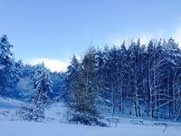 Winter in Poland 1