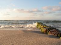 Baltic see