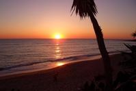 Sunset,Beach,Sea,Palms,Sand