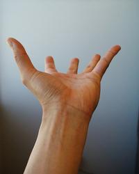 Expressive Hands 9