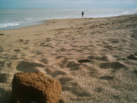 South Sea 1