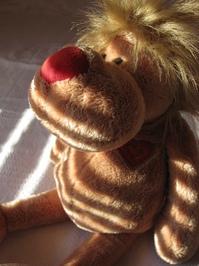Teddy Lion