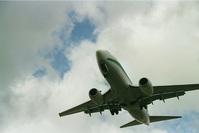 Boeing 737 Transavia Airplane