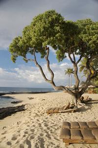 Hawai'i Beaches 6