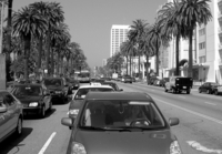 Ocean Avenue Traffic
