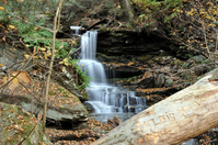 Glen of many falls - 2