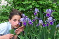 Girl And Flowers 2