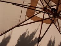 French Cafe Umbrella
