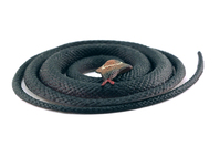 Rubber Snake 2