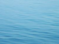 Calm Water Texture