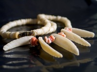 Jewelry series 8
