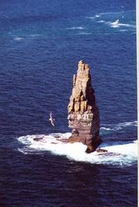 Rock in Ireland