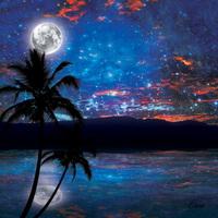 Maui Starry Night