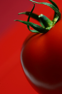evil tomato
