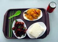 Asian food 4