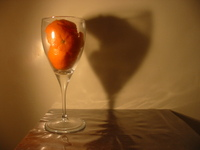 fruit art 1