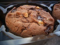 Melted Cookie