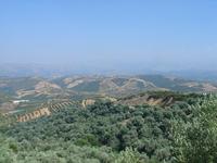 Crete 2005 10