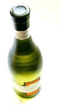 White wine bottle studies 1