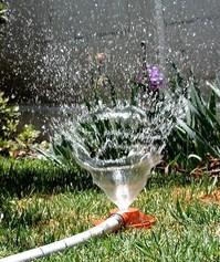 Sprinkler #3