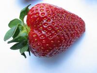 Strawberry #2
