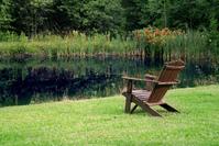 Tranquil Spot