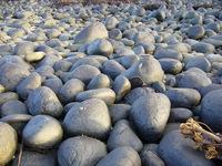 Northumbrian Beach 1