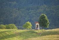 Summer shrine