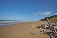 New Zealand Beach 1