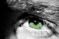 Mon oeil 5