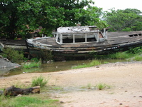 Row no Boat